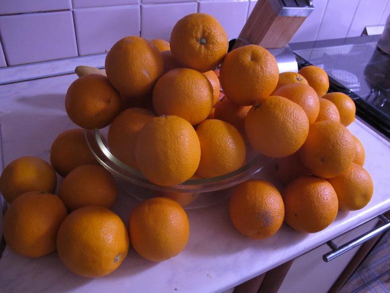 Сыроедение апельсины для похудения польза бесплатно.